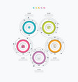 infographics template 5 options with circle vector image vector image