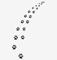 trail of cats vector image