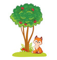 fox sits in a clearing next to a green tree on a vector image