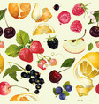 Fruit and berry pattern vector image vector image
