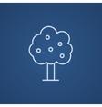 Fruit tree line icon vector image vector image