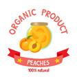 healthy organic jam of fresh peach isolated on vector image