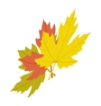 Maple leaves icon isometric 3d style vector image