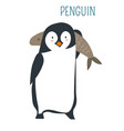 penguin with huge fish childish book character vector image