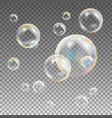 soap bubbles rainbow reflection soap vector image vector image
