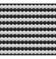 Black and White Pattern Hexagon Mosaic vector image