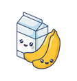 cute milk bananas fruit vector image vector image