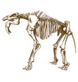 engraving deinotherium skeleton vector image