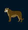 in flat style tiger vector image vector image