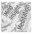 insight meditation Word Cloud Concept vector image vector image