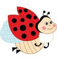 ladybug22 vector image vector image