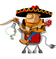 mexican on a donkey vector image vector image