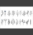 set of hand drawn decorative herbs and vector image