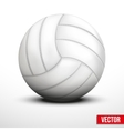 Volleyball in traditional one color on white vector image vector image