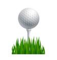 golf ball on a tee vector image vector image