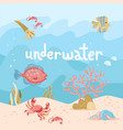 hand drawn cartoon sea underwater nature scene vector image