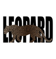 leopard t-shirt fashion print with leopard vector image