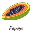 papaya icon isometric style vector image vector image