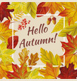 slogan hello autumn leaves rowan acorn vector image vector image