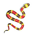 3d of coral snake or micrurus vector image vector image