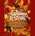 autumn festival poster berries in foliage vector image vector image