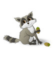 cartoon raccoon holding a nutlet vector image