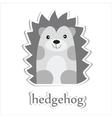 hedgehog vector image