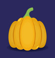 pumpkin isolated on background flat vector image