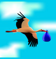 stork in the blue sky the bird holds the bundle vector image