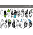 Feather collection vector image