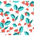 Mistletoe seamless pattern vector image