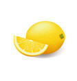 realistic bright yellow lemon whole and sliced vector image