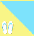 slippers yellow blue color vector image vector image