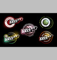 volleyball logo set modern professional vector image vector image