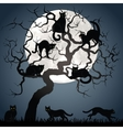 Black cats on tree vector image