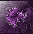 betta fish logo template vector image