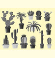 cactus flat style nature desert flower monochrome vector image vector image