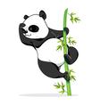 Climbing Panda vector image vector image