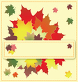 colorful maple leaves on the greeting card vector image vector image