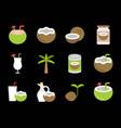 cute coconut icon set vector image vector image