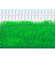 garden grass vector image vector image
