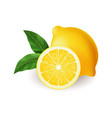 realistic bright yellow lemon with green leaf vector image vector image