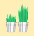 Plant in zinc pot flat icon