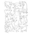 cats line art vector image vector image