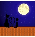 cats sitting on roand stare at moon vector image