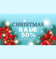 christmas sale banner with poinsettia flower vector image