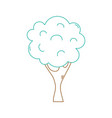 color line nature tree with trunk and branch vector image