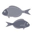 Dorado Fish vector image vector image