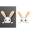 isolated easter cute bunny rabbit hole paws design vector image