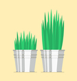 Plant in zinc pot flat icon